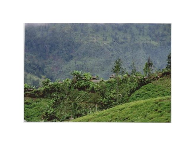 Lush, green, mountainous scenery around Ninia, Central Highlands, West Papua