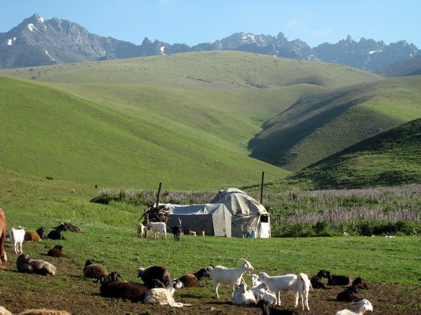 A herders' yurt in the Suusamyr Valley, Kyrgyzstan